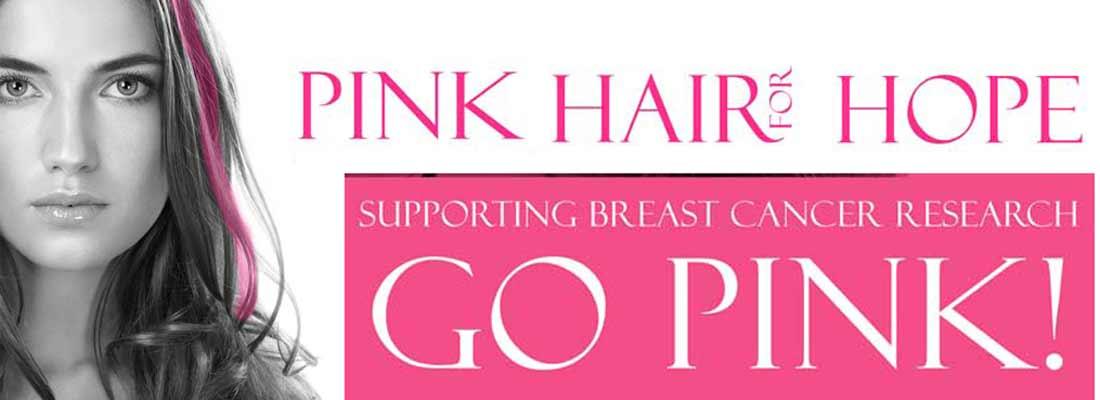2015_banner-pink-hair